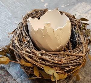das kleine Ei